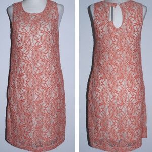 Anthropologie TULLE Lace Knit Shift Dress